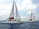View Party Catamaran Cruises Photo